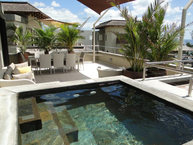Terrace and Plunge pool