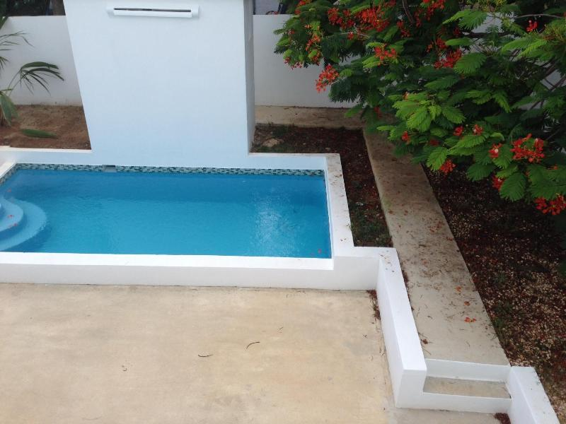 Pool with concrete deck