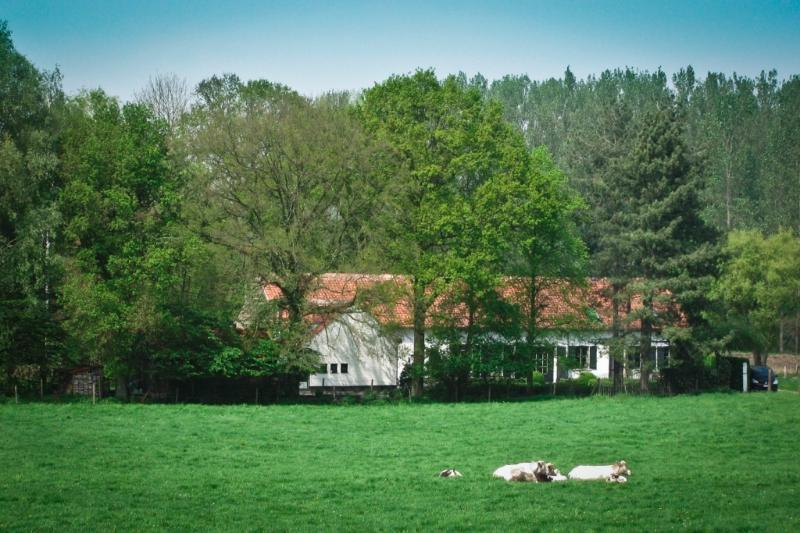 Magnificent rural location.  Near Leuven, still very quiet.  Perfect for business or vacation