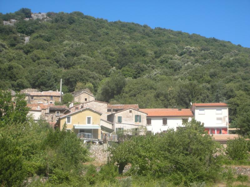 Village and house