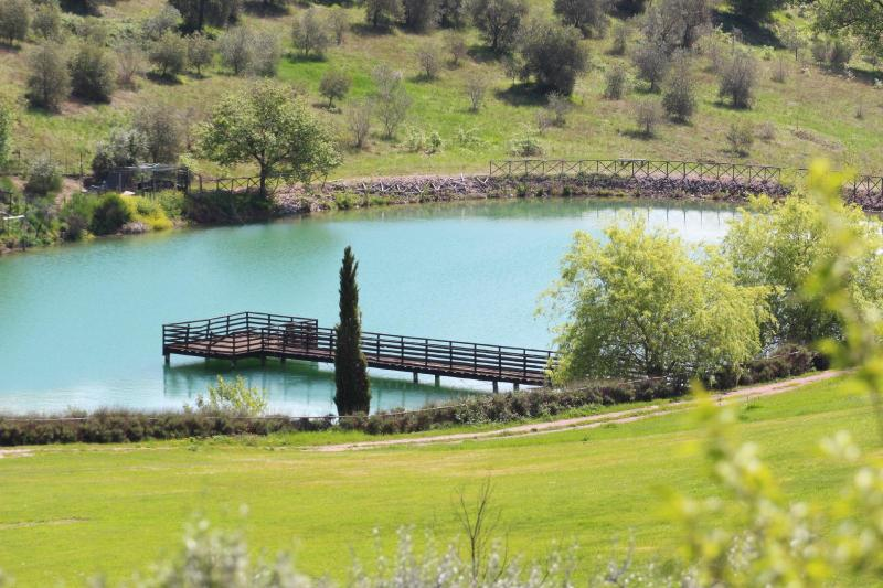 the azure blue lake sits amongst the beautiful olive groves