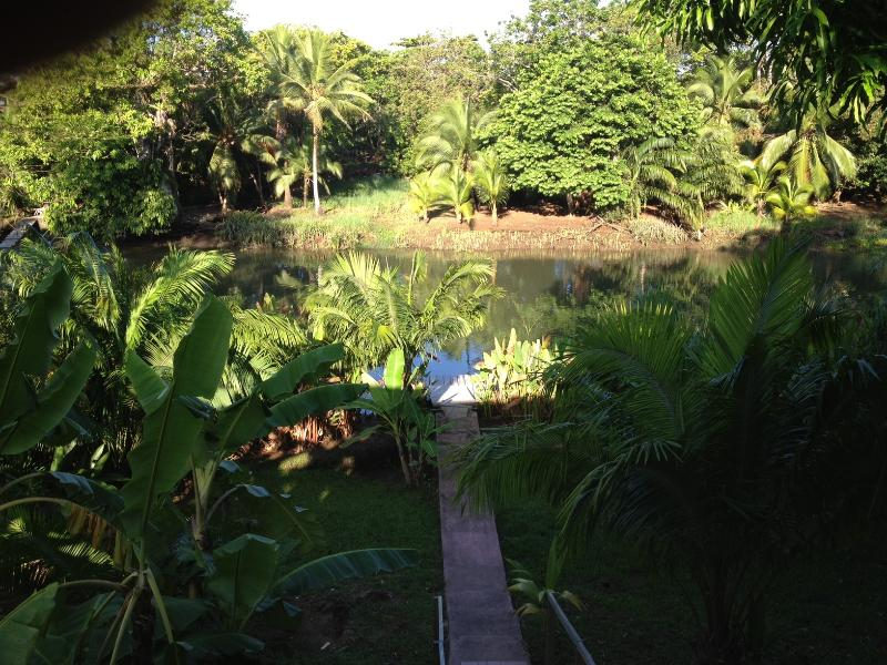 View from the balcony of your private dock on the Sierpe River