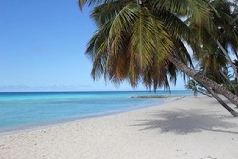 Barbados Turtle Beach 150 meter / yard from Michelin Apartments.