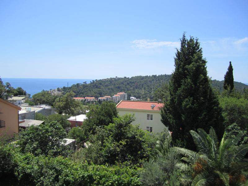 Sea view from joint terasse (sea on left is Sutomore beach, 5 to 10 min wal