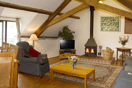 Bracken Cottage - Living room, exposed beams and a log fire