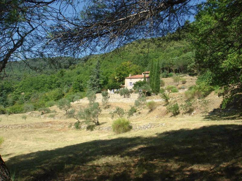 Ultimate privacy in this idyllic provencal 400 year old Mas on 3 hectares of private grounds