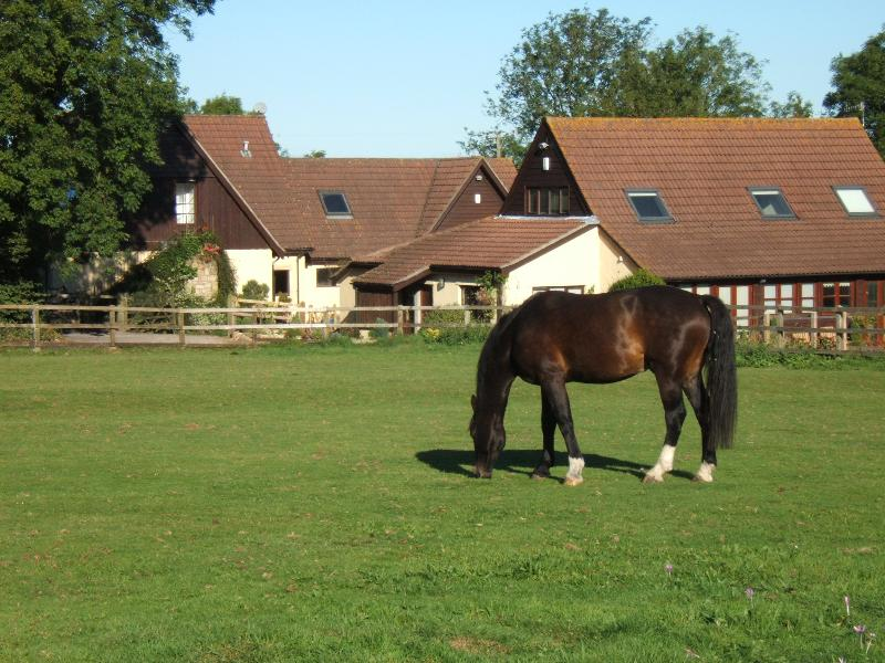 Stable Loft set in 10 acres in an AONB. Views of fields, forests, hills and horses