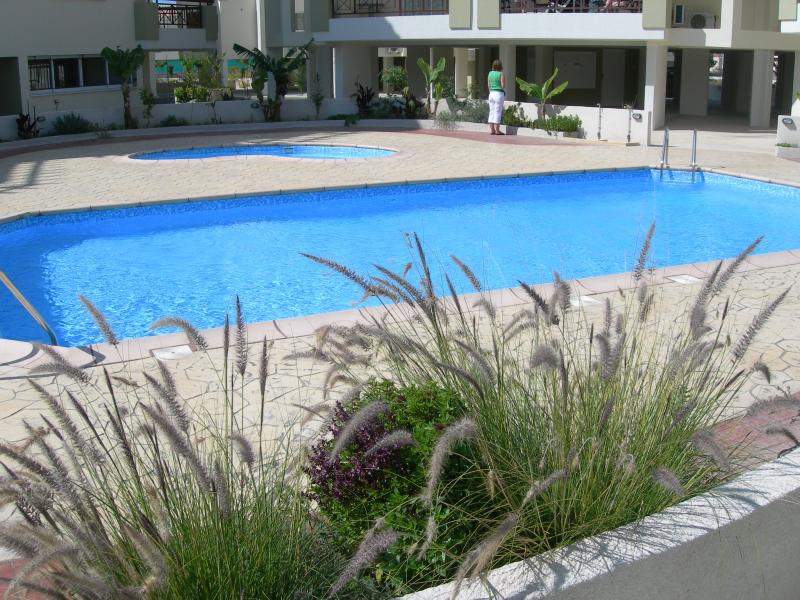 One of the Sparkling Pools with Baby Pool