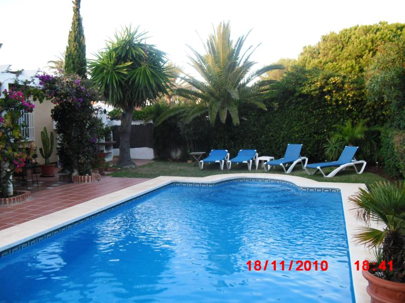 Pool and Barbeque
