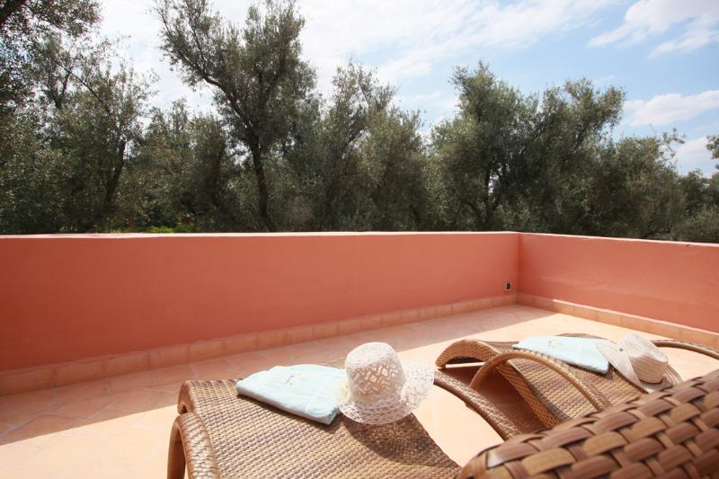 lower terrace overlooking the olive grove