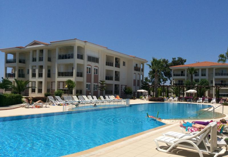 Outdoor pool with free sunbeds, cushions and parasols