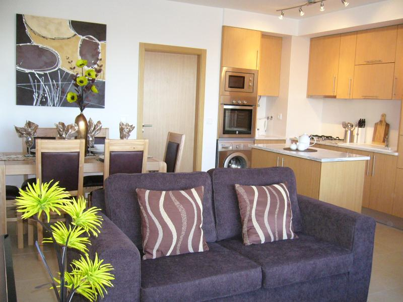 Open plan living area and well equipped kitchen