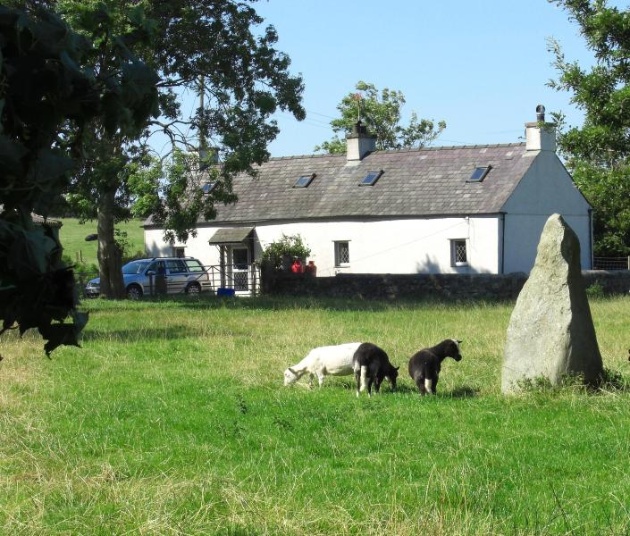 Glan Rhyd Cottage, summer meadow - guests can picnic in the meadow