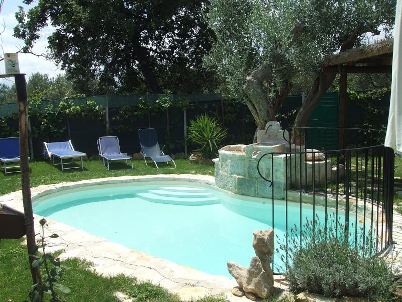 One of the attractions of the house is the garden with a welcoming pool