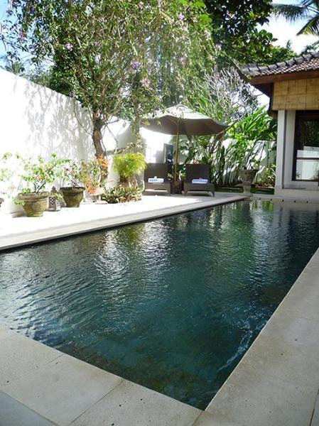 The pool and sun lounges.
