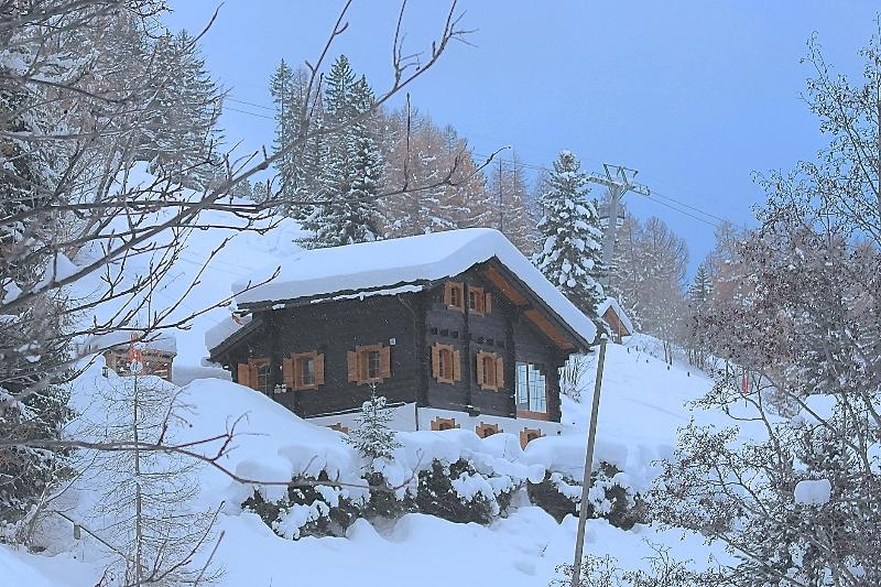 Chalet La Piste - on the ski slope