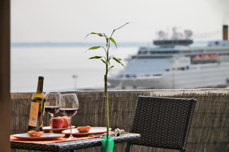 Enjoy a sunny terrace overlooking the river and its varied traffic