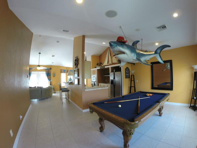 Pool Shark is waiting for you