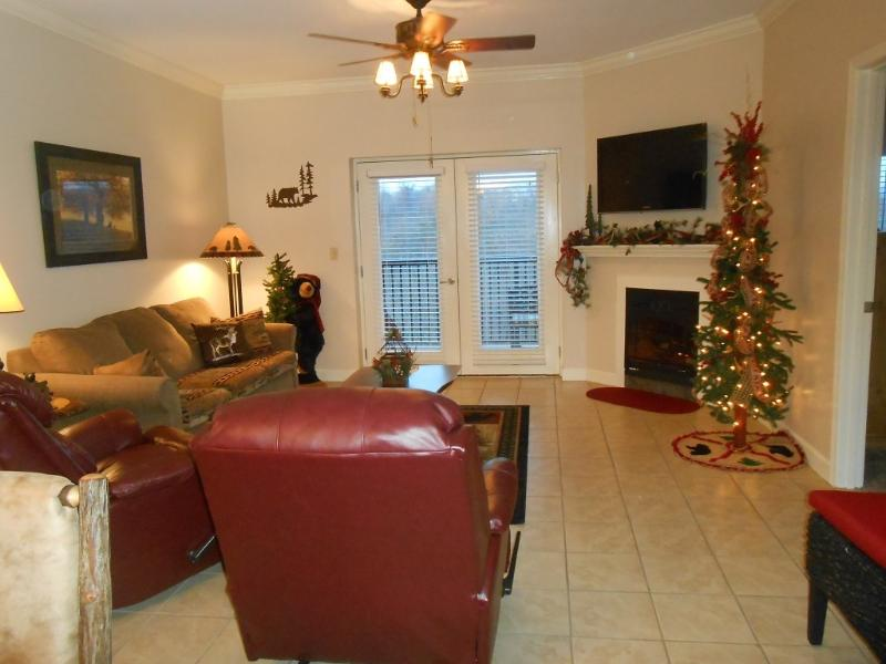Large living area with 46' TV and electric fireplace