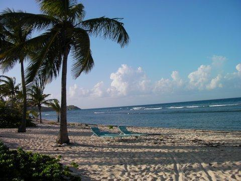 Relax and snorkel in the privacy of Pelican Cove beach.