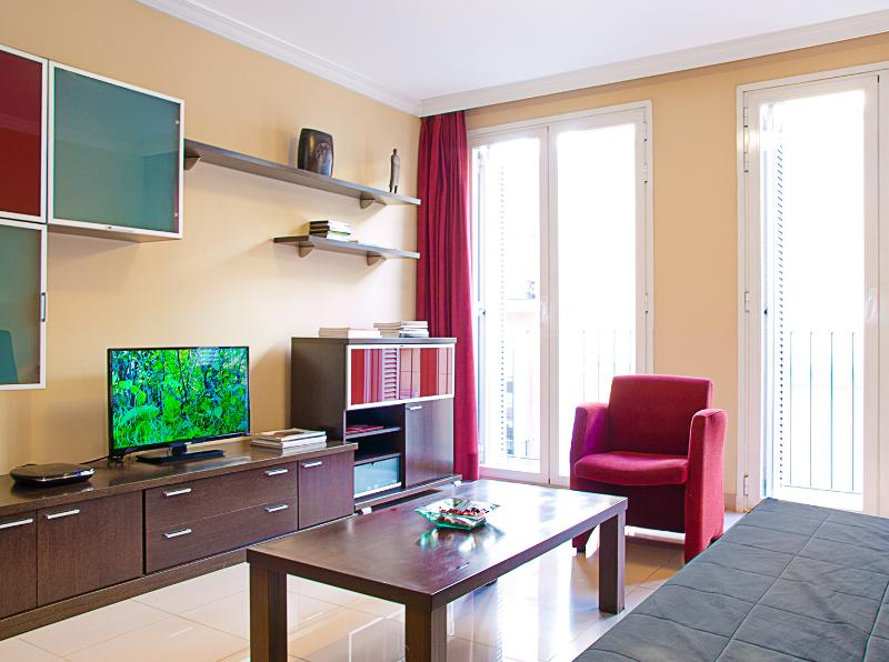 Big living-room , with Led TV + DVD