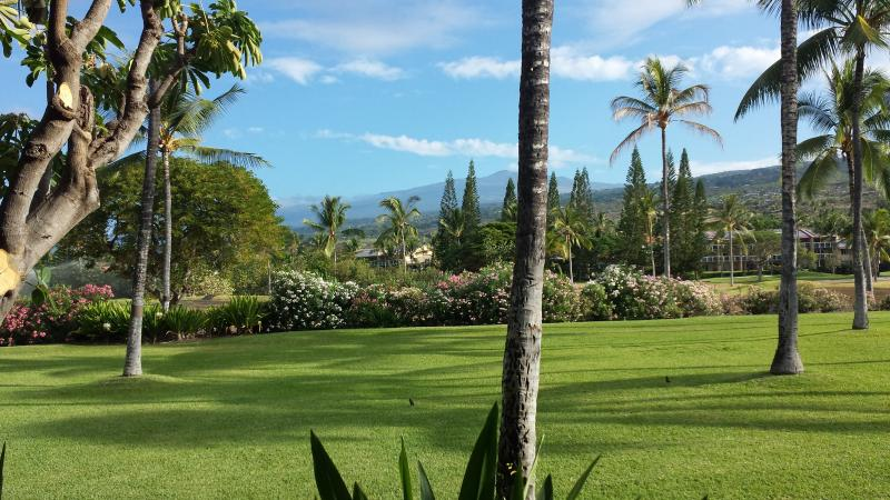 View from main lanai