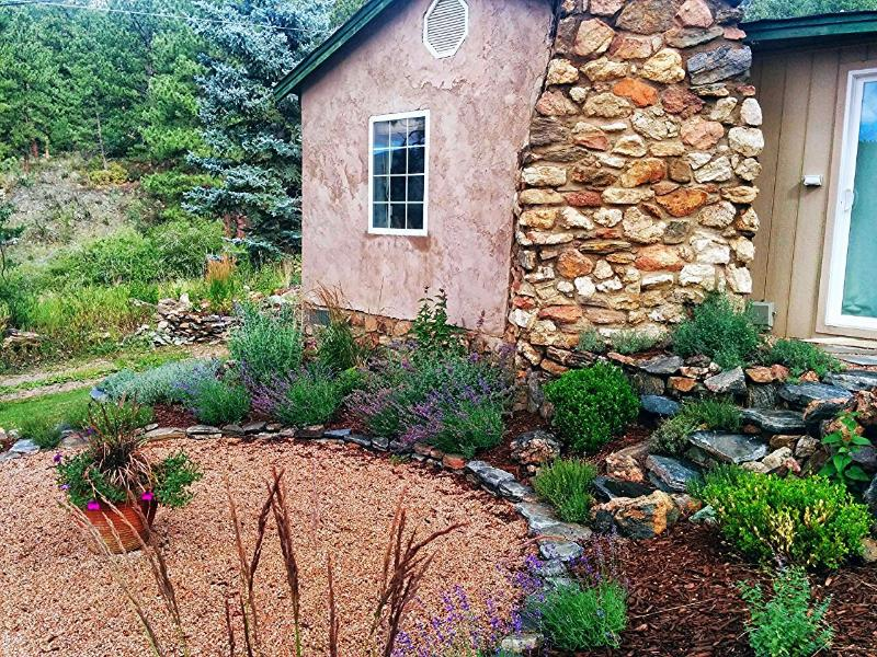 Front of Cottage with Round Terrace with Lavender Border