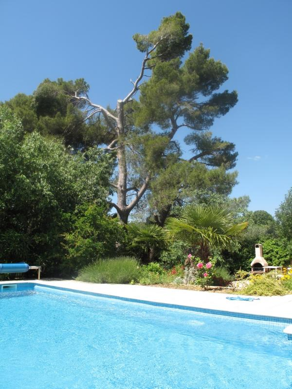 This is the Vineyard Houses' gorgeous swimming pool. Surrounded by lovely nature, this is the perfect place to lie down and relax by the pool on a hot day in the South of France.
