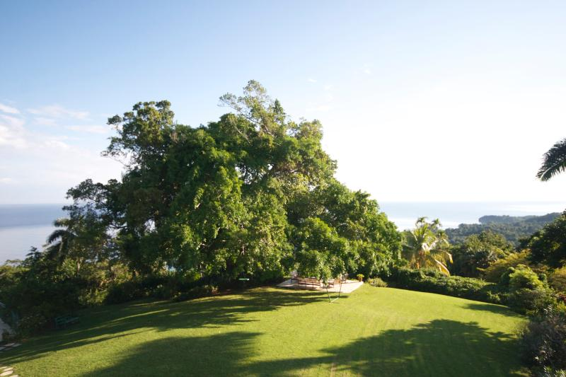 Norse Hill Estate ocean views in the soft light of early morning, from your bedroom balcony