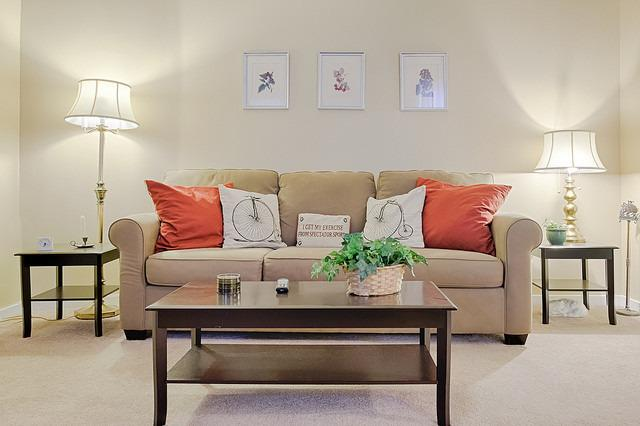 Living room with pull-out sofa bed