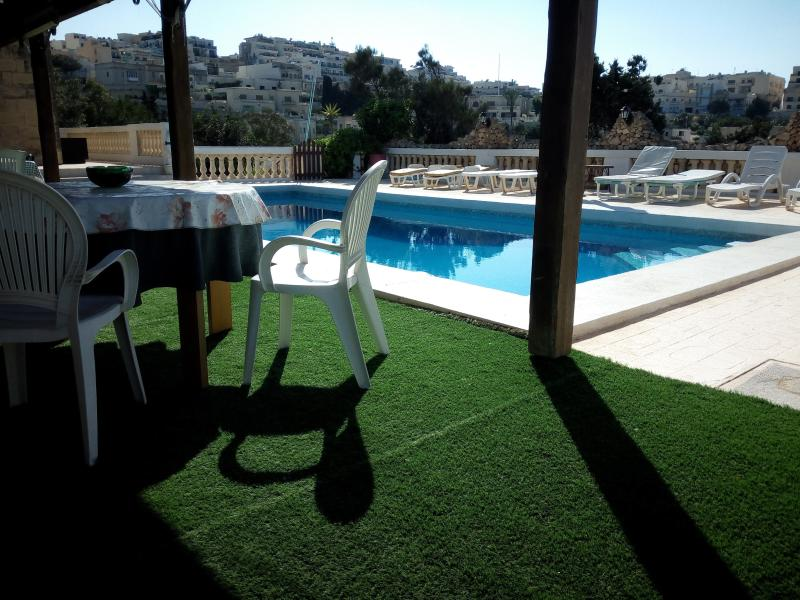 Patio with synthetic Lawn