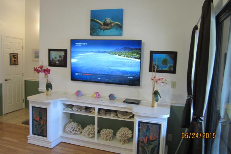 Right side of living room with New 60' LCD smart wi-fi TV & Blu-ray player added 5-24-2015