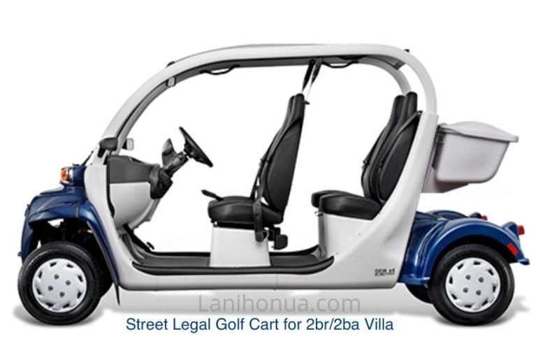 Golf Cart - 4 Person Street Legal Cart with Seat belts (GEM Electric Car)