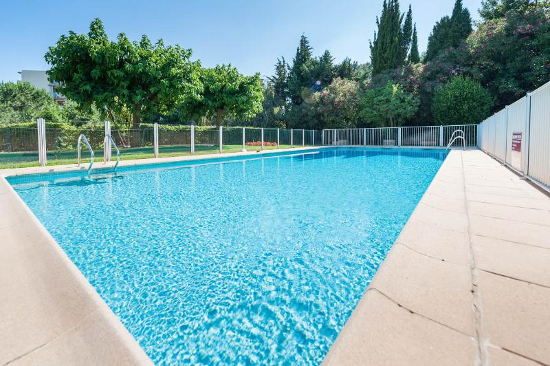 Modern 45 ft pool, in charming garden, with shallow and deep ends
