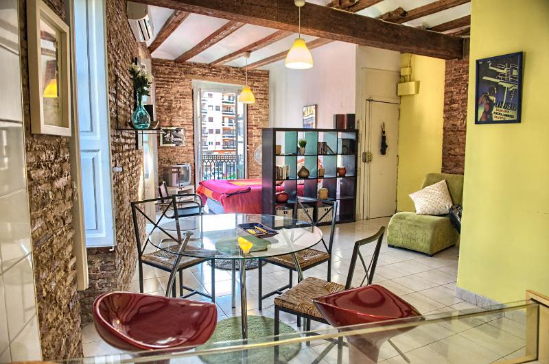 Charming spacious 50m2 studio bathed throughout with natural light. Charming aspects.