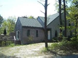 Wellfleet 3 Bedroom, 2 Bath close to Newcomb Hollow!