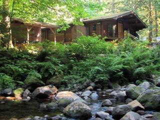 Moondance Cabin on Clear Creek, secluded, decks, BBQ, hot tub, trails nearby, Zigzag