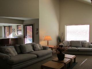 Great condo on the Payette river. Walk to lake., McCall