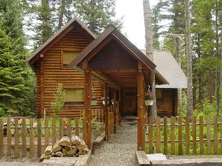 Martins on the River - Relax and enjoy this Log Cabin nestled in the Pines, McCall