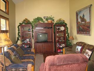 Comfortable condo, walk to beach and down town., McCall