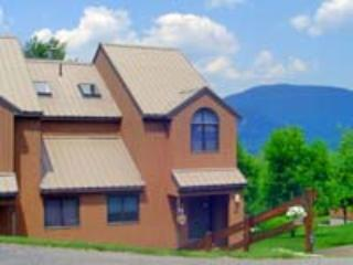 White Mountains Getaway - Image 1 - Bartlett - rentals