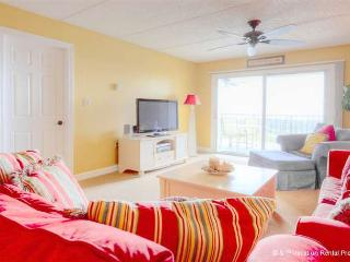 Island South 7, Ocean Front, New Gourmet Kitchen, HDTV - Saint Augustine vacation rentals