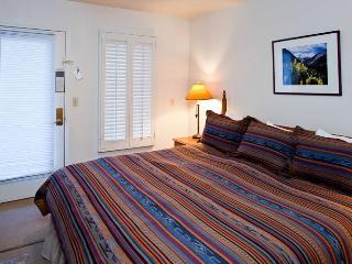 Viking Lodge #216 - Telluride vacation rentals