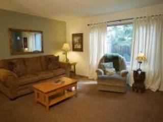 Lake Forest Glen 109 - Image 1 - Tahoe City - rentals