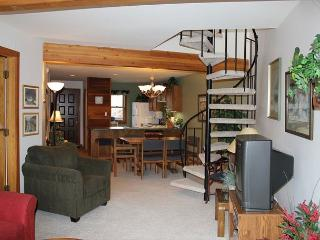 SS101 Great Condo w/Fireplace, Clubhouse, Wifi, Silverthorne