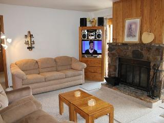 BV103BB Cute Condo w/ Elevator, Wifi, Fireplace, Clubhouse, Silverthorne