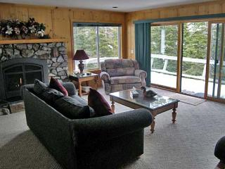 Lovely Cabin with 1 Bedroom-1 Bathroom in Incline Village (351A)