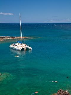 Search for Turtles and Reef Fish While Snorkeling Along Maui's West Coast
