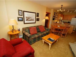 Buffalo Lodge 8368 - Keystone vacation rentals