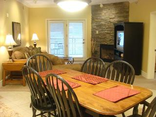 Baskins Creek 313 - Gatlinburg vacation rentals